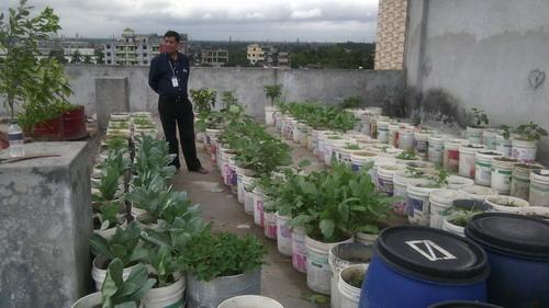 Rooftop garden in bangladesh. Roof Garden in Bangladesh ...